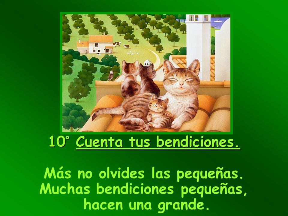 10° Cuenta tus bendiciones. Más no olvides las pequeñas