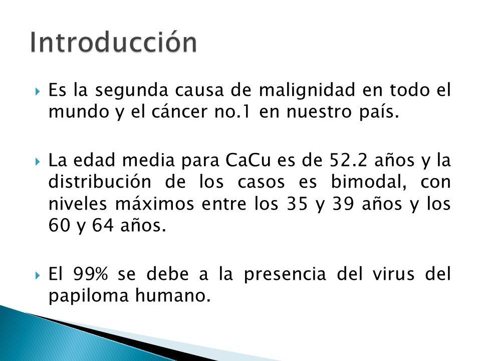 Introducción Es la segunda causa de malignidad en todo el mundo y el cáncer no.1 en nuestro país.