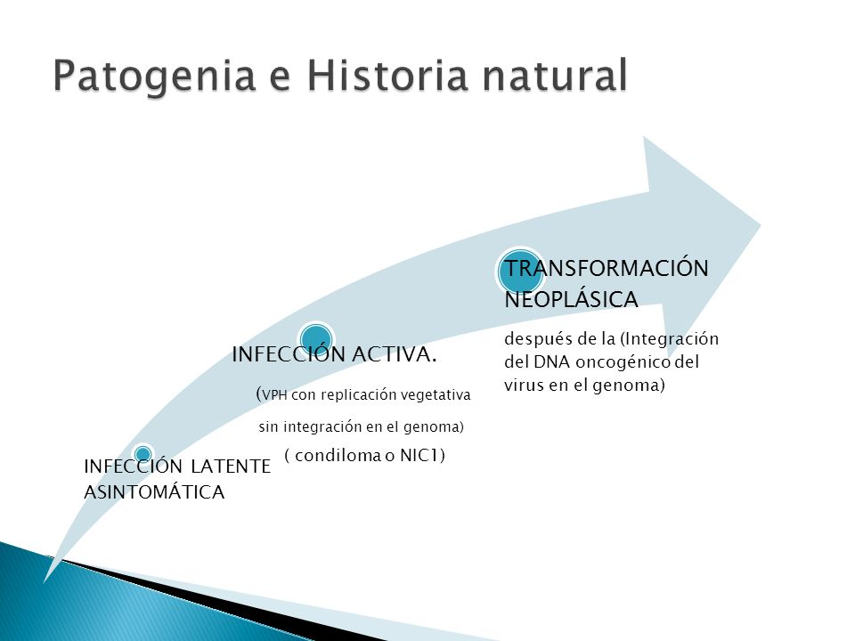 Patogenia e Historia natural