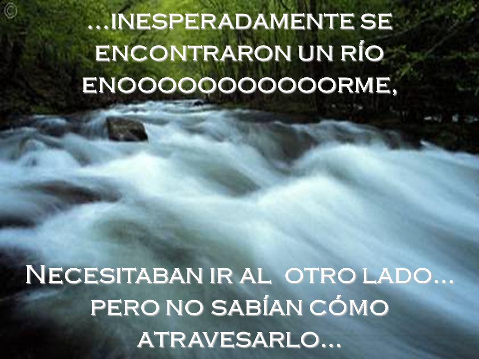 ...inesperadamente se encontraron un río enooooooooooorme,