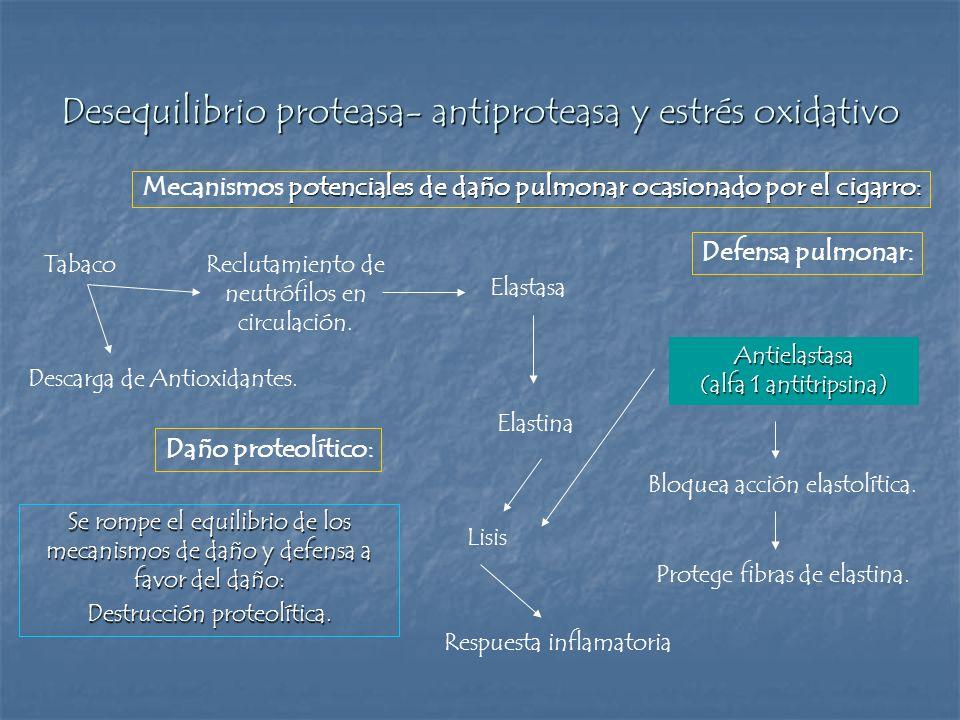 Desequilibrio proteasa- antiproteasa y estrés oxidativo