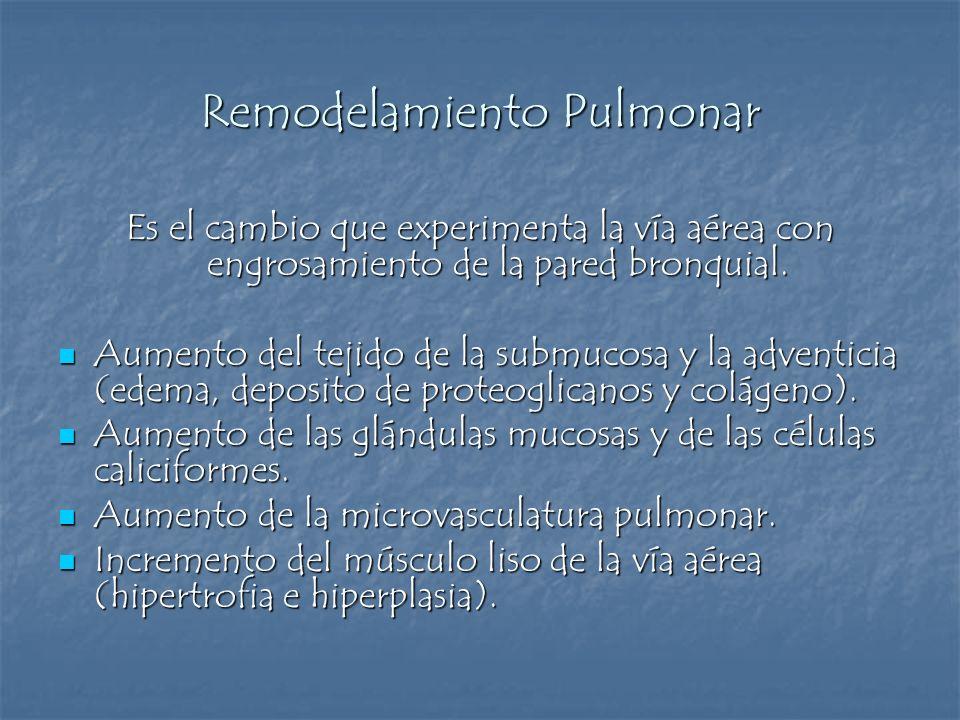 Remodelamiento Pulmonar