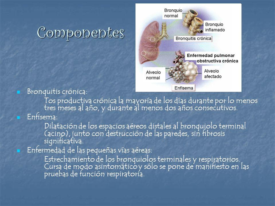 Componentes Bronquitis crónica: