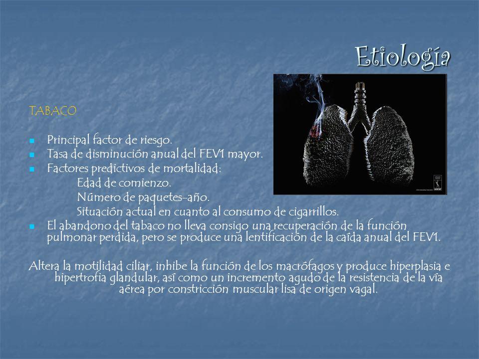 Etiología TABACO Principal factor de riesgo.