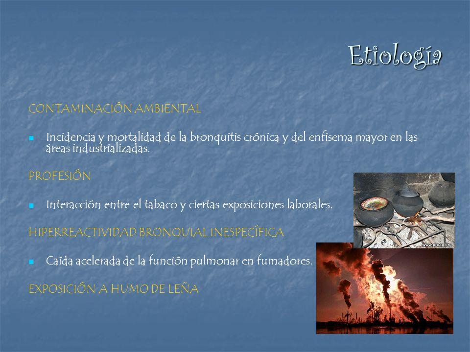 Etiología CONTAMINACIÓN AMBIENTAL