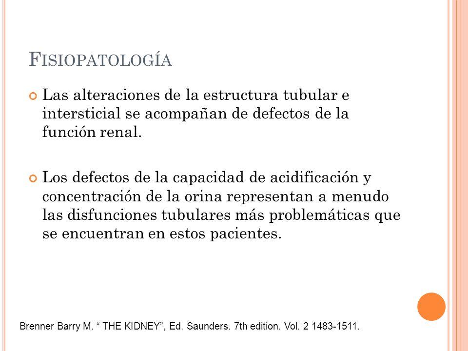 Fisiopatología Las alteraciones de la estructura tubular e intersticial se acompañan de defectos de la función renal.