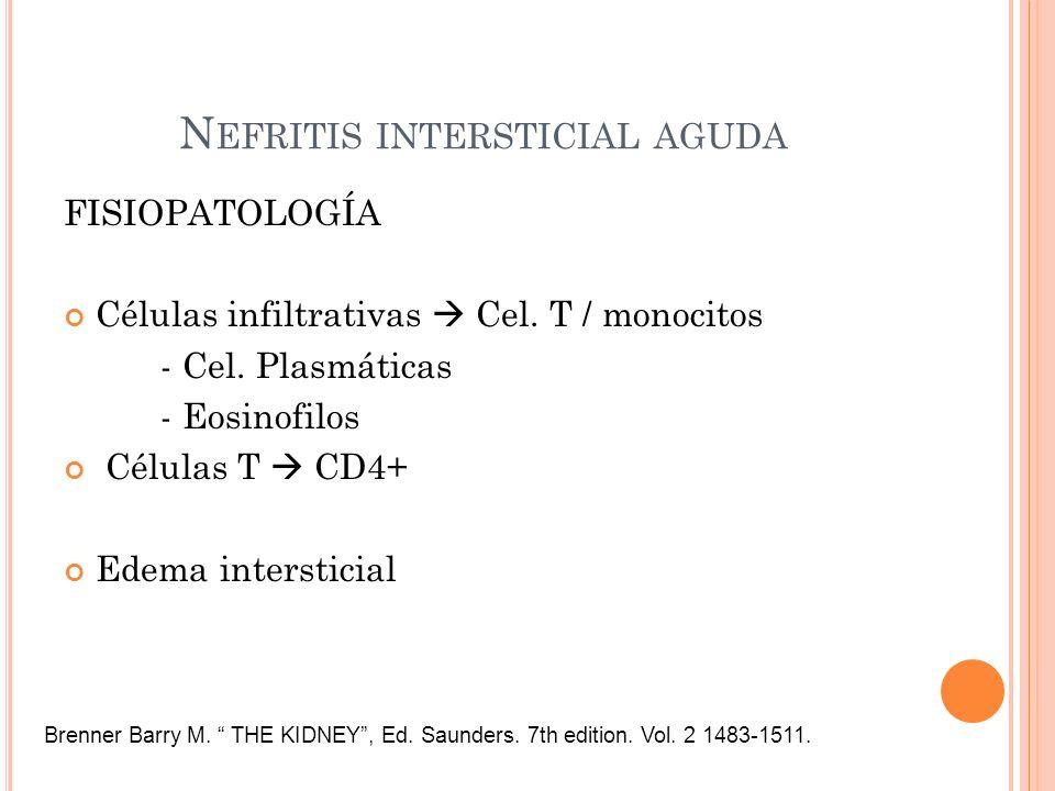 Nefritis intersticial aguda