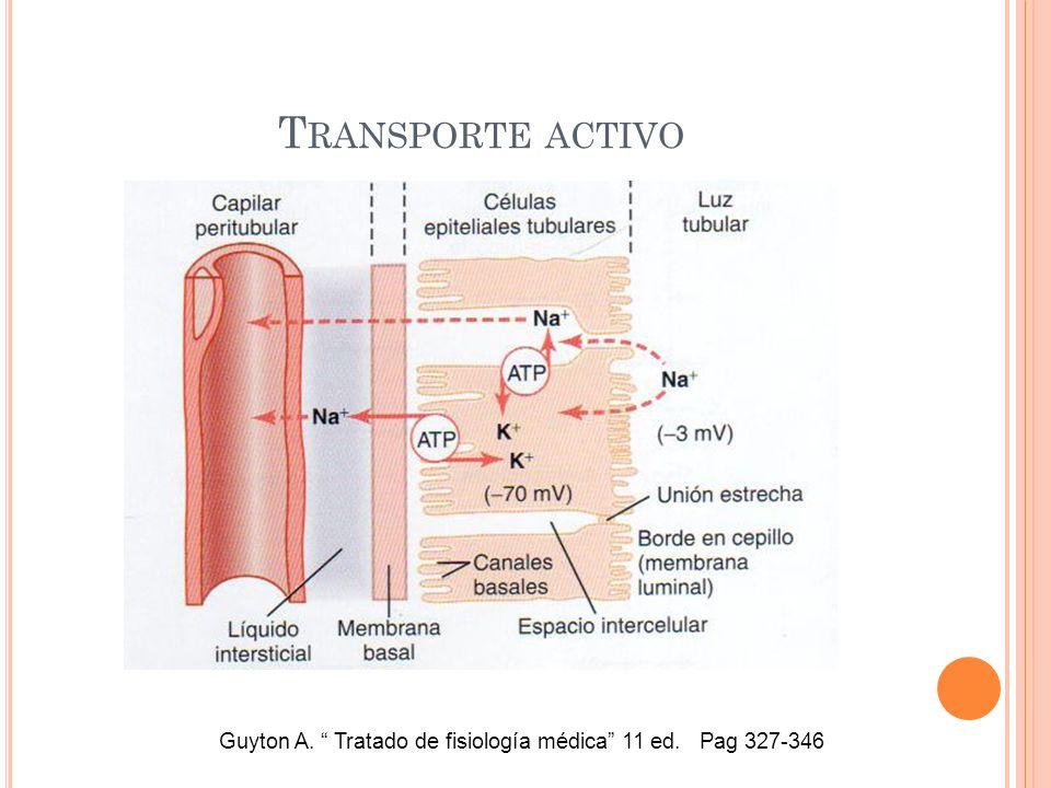 Guyton A. Tratado de fisiología médica 11 ed. Pag 327-346