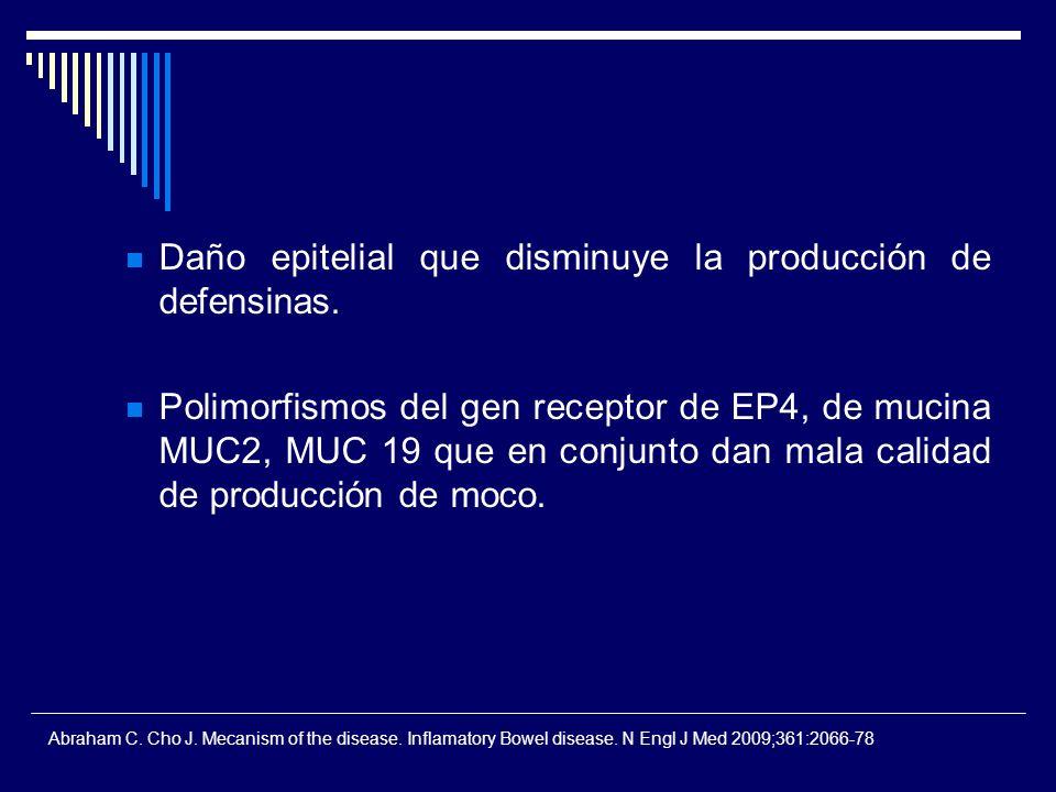 Daño epitelial que disminuye la producción de defensinas.