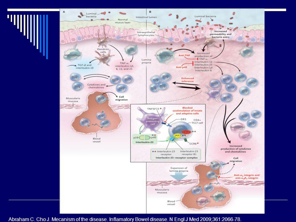 Abraham C. Cho J. Mecanism of the disease. Inflamatory Bowel disease