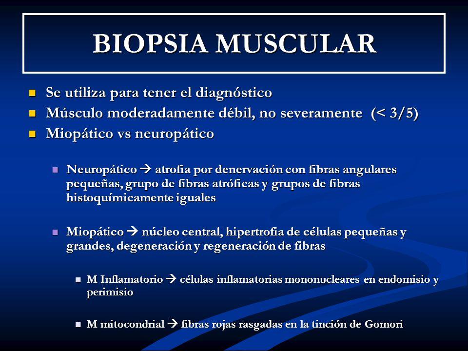 BIOPSIA MUSCULAR Se utiliza para tener el diagnóstico