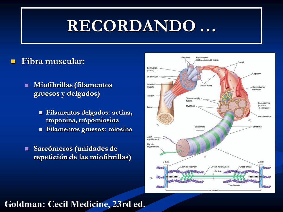 RECORDANDO … Fibra muscular: Goldman: Cecil Medicine, 23rd ed.