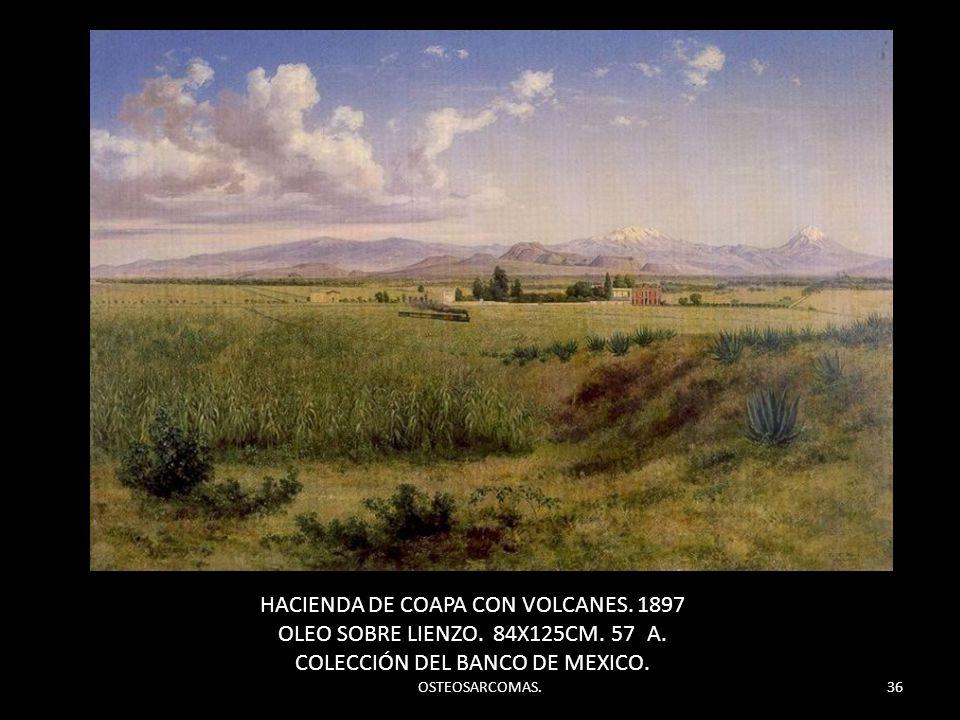 HACIENDA DE COAPA CON VOLCANES. 1897
