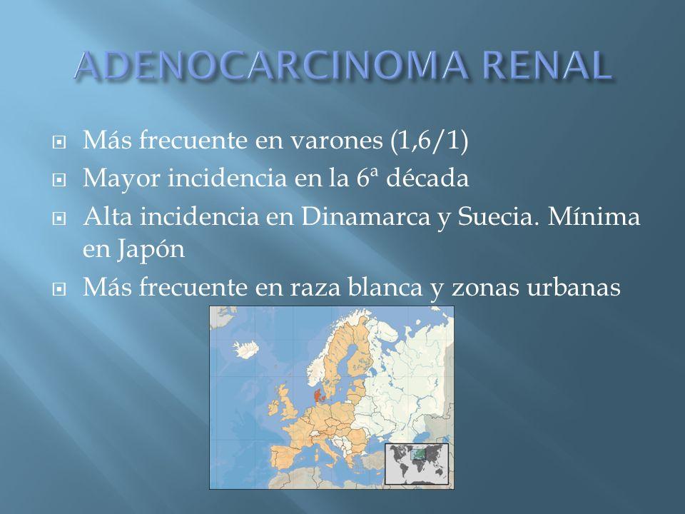 ADENOCARCINOMA RENAL Más frecuente en varones (1,6/1)