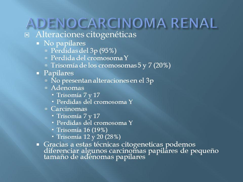 ADENOCARCINOMA RENAL Alteraciones citogenéticas No papilares Papilares