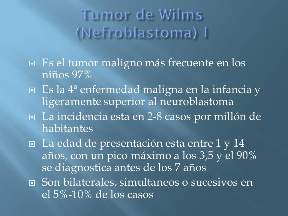 Tumor de Wilms (Nefroblastoma) I