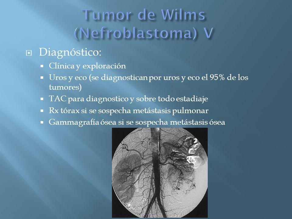Tumor de Wilms (Nefroblastoma) V