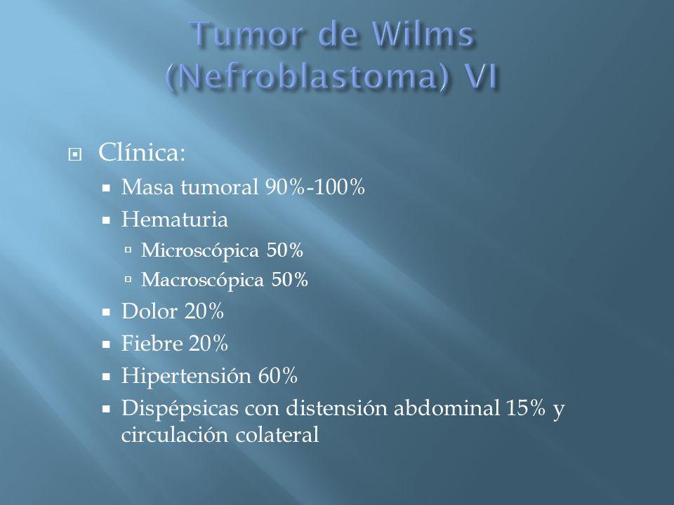 Tumor de Wilms (Nefroblastoma) VI
