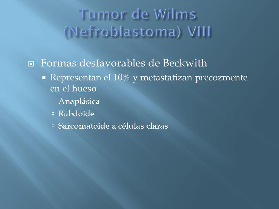 Tumor de Wilms (Nefroblastoma) VIII
