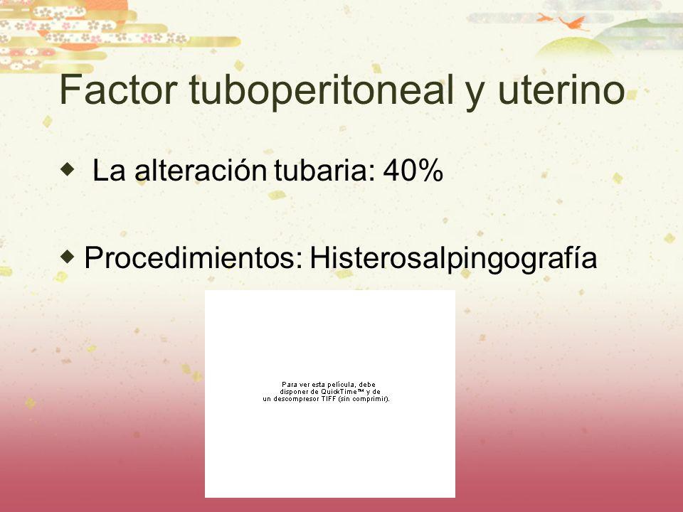 Factor tuboperitoneal y uterino