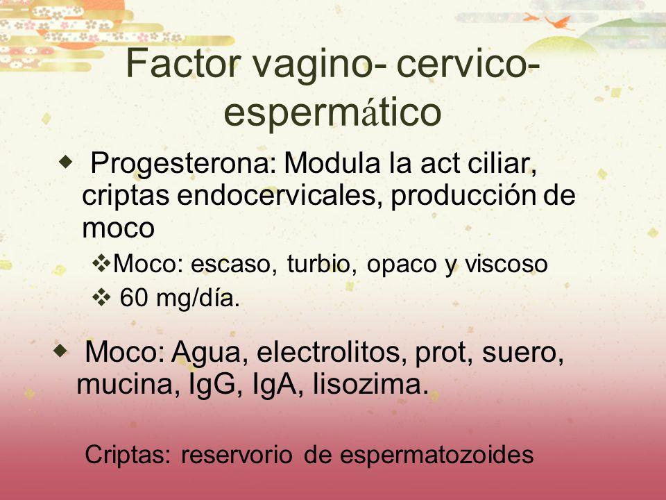 Factor vagino- cervico- espermático