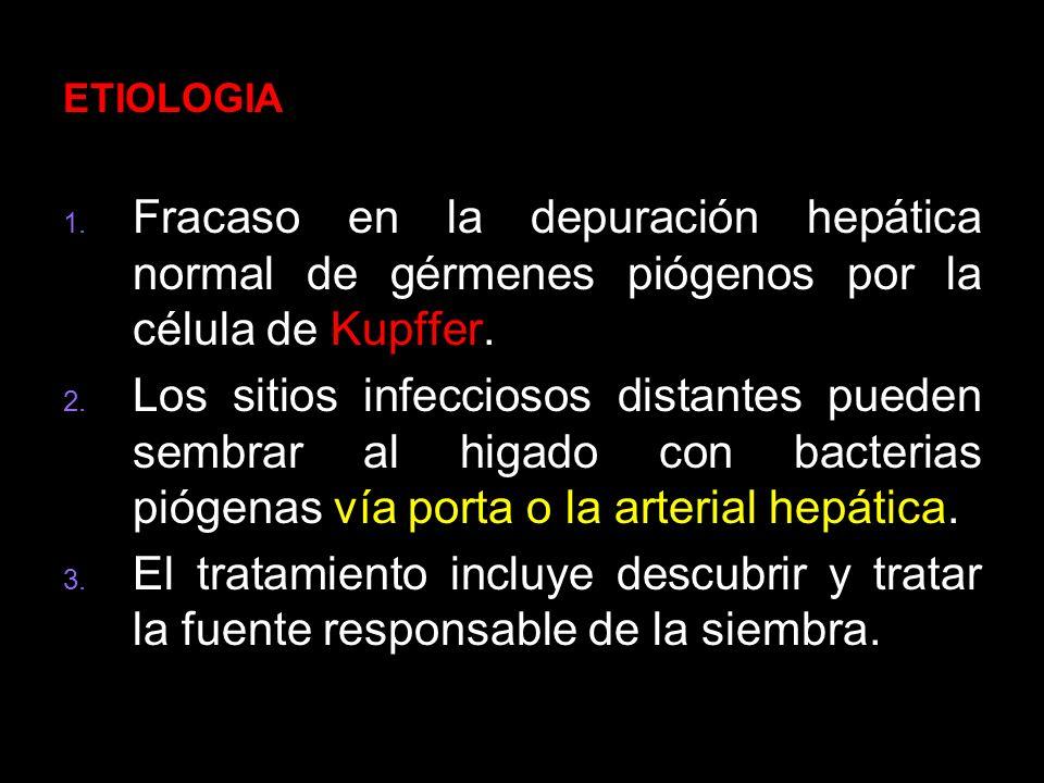 ETIOLOGIA Fracaso en la depuración hepática normal de gérmenes piógenos por la célula de Kupffer.