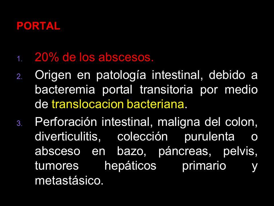 PORTAL 20% de los abscesos. Origen en patología intestinal, debido a bacteremia portal transitoria por medio de translocacion bacteriana.