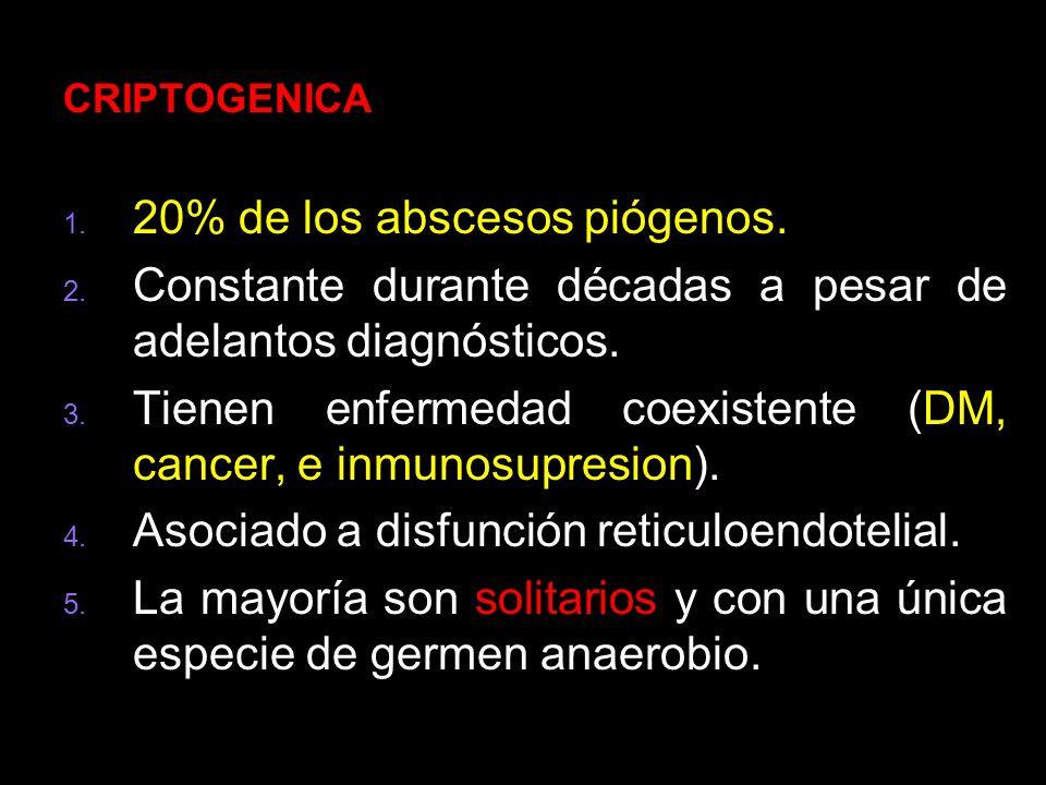 20% de los abscesos piógenos.