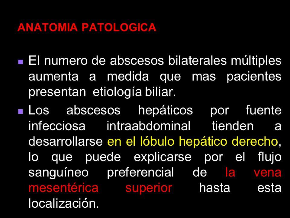 ANATOMIA PATOLOGICA El numero de abscesos bilaterales múltiples aumenta a medida que mas pacientes presentan etiología biliar.