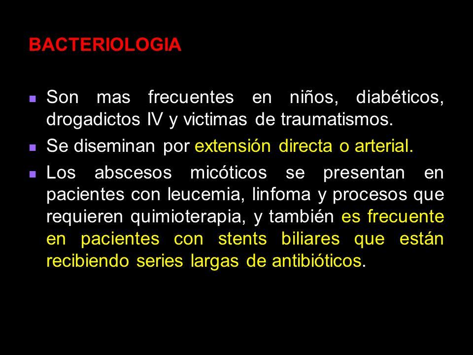 BACTERIOLOGIA Son mas frecuentes en niños, diabéticos, drogadictos IV y victimas de traumatismos. Se diseminan por extensión directa o arterial.