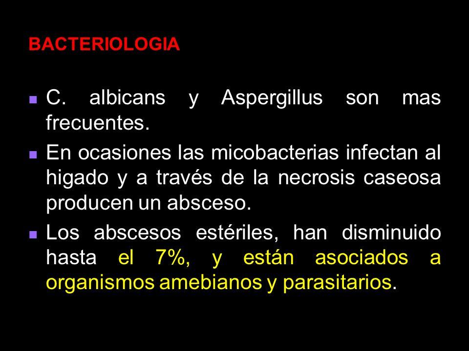 C. albicans y Aspergillus son mas frecuentes.