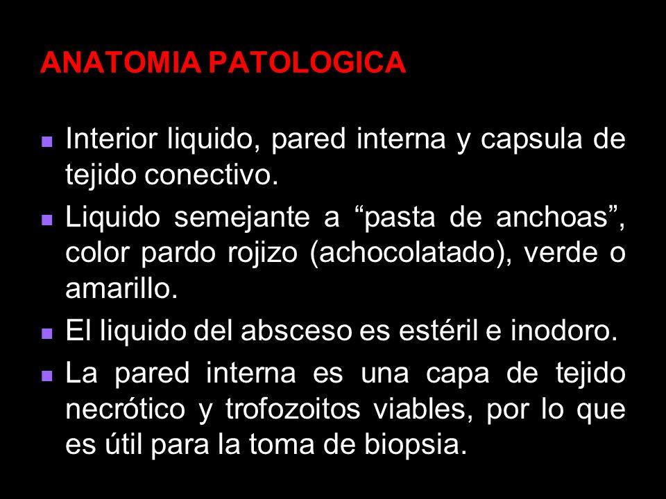 ANATOMIA PATOLOGICA Interior liquido, pared interna y capsula de tejido conectivo.
