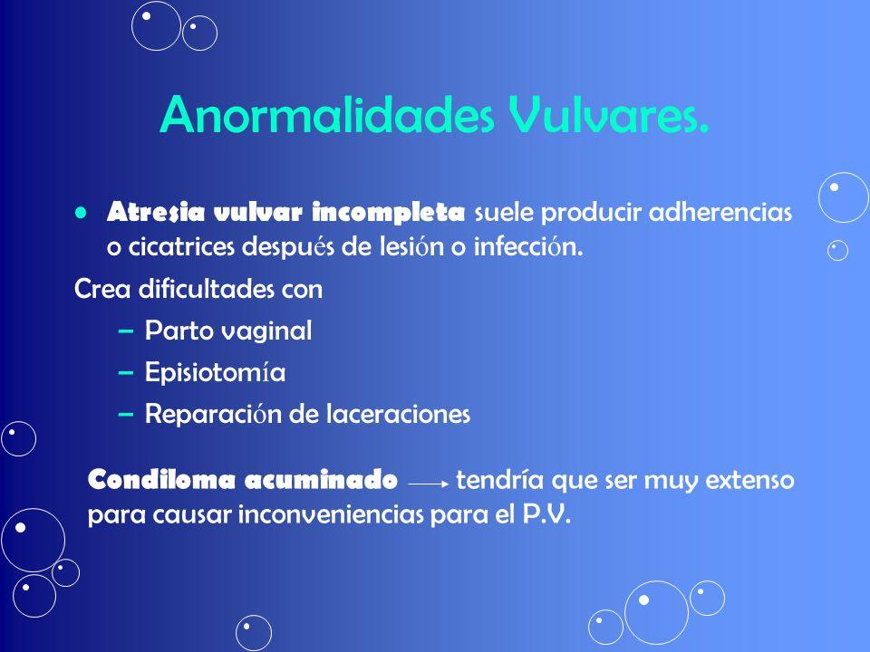 Anormalidades Vulvares.