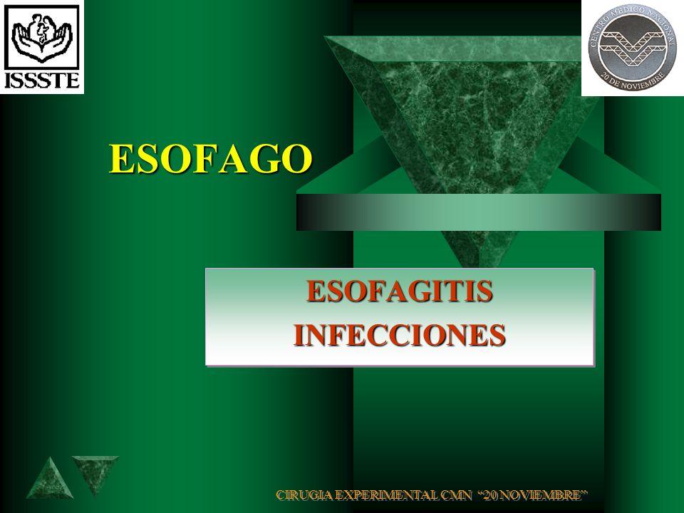 ESOFAGITIS INFECCIONES CIRUGIA EXPERIMENTAL CMN 20 NOVIEMBRE