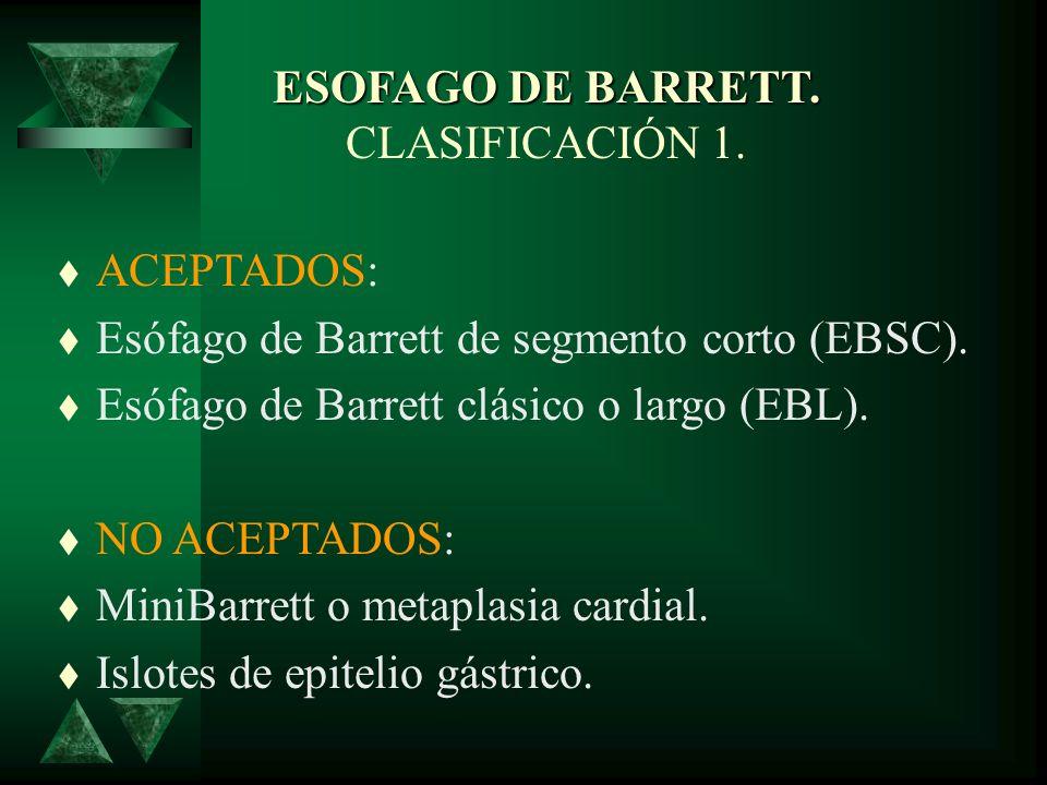 ESOFAGO DE BARRETT. CLASIFICACIÓN 1.