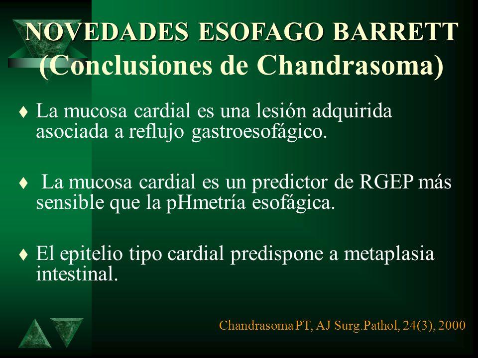 NOVEDADES ESOFAGO BARRETT (Conclusiones de Chandrasoma)