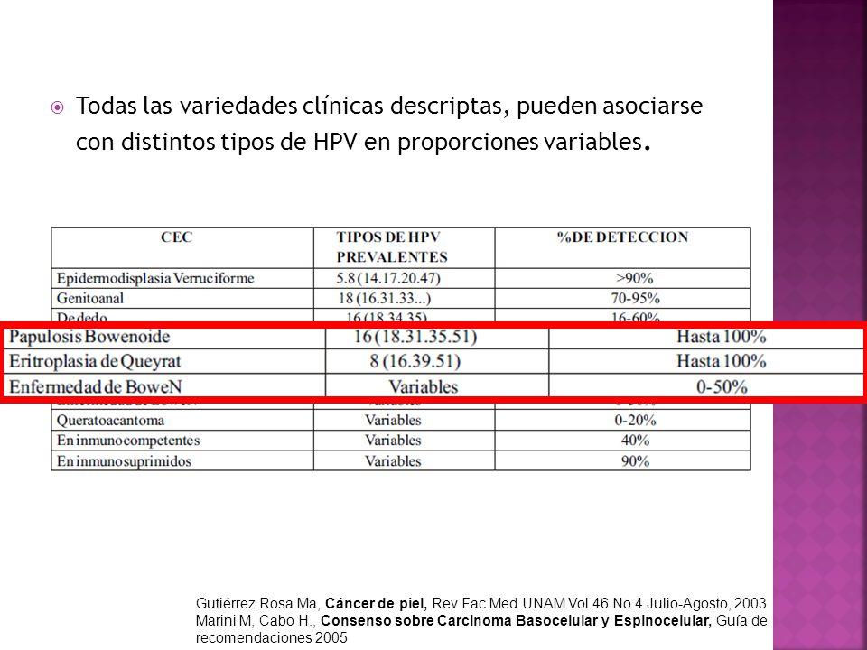 Todas las variedades clínicas descriptas, pueden asociarse con distintos tipos de HPV en proporciones variables.