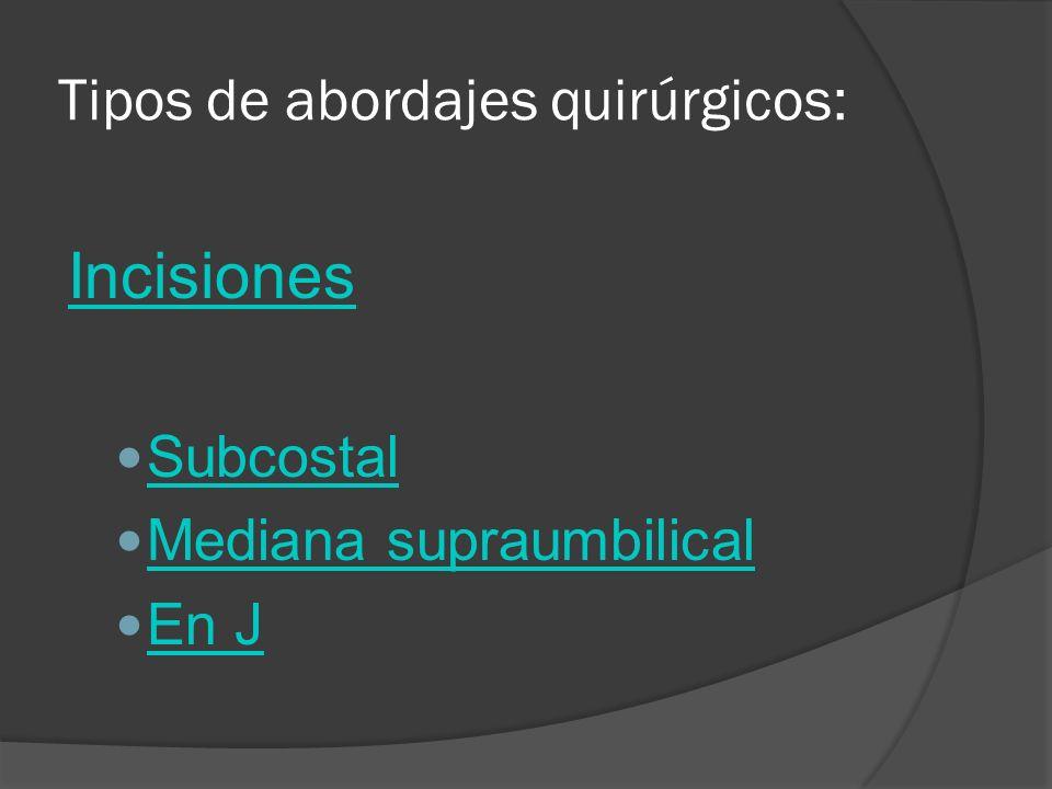 Tipos de abordajes quirúrgicos: