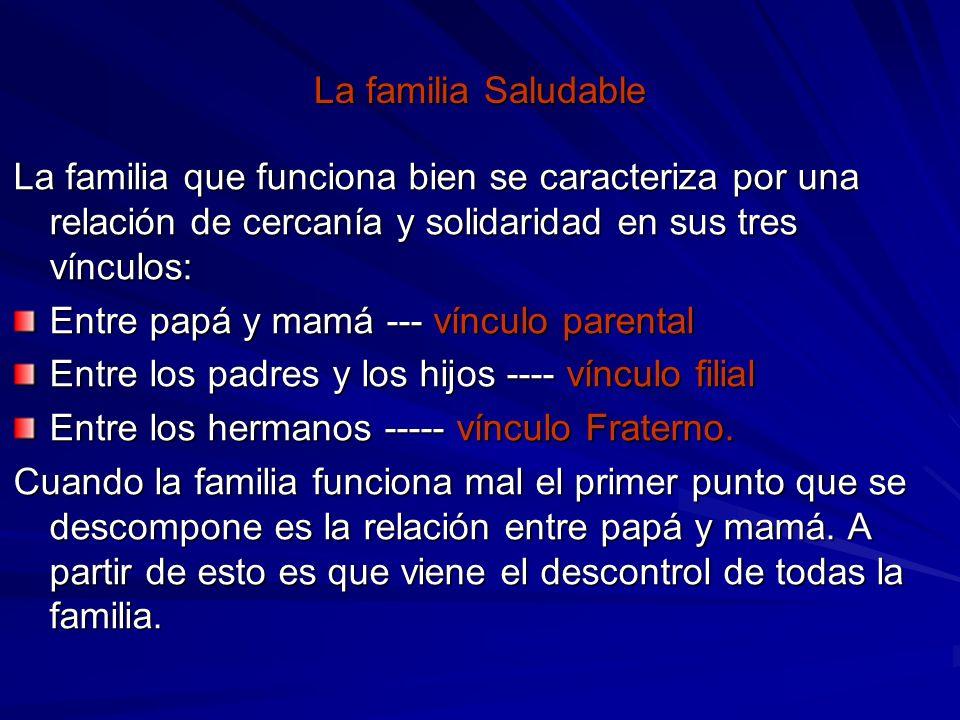 La familia Saludable La familia que funciona bien se caracteriza por una relación de cercanía y solidaridad en sus tres vínculos: