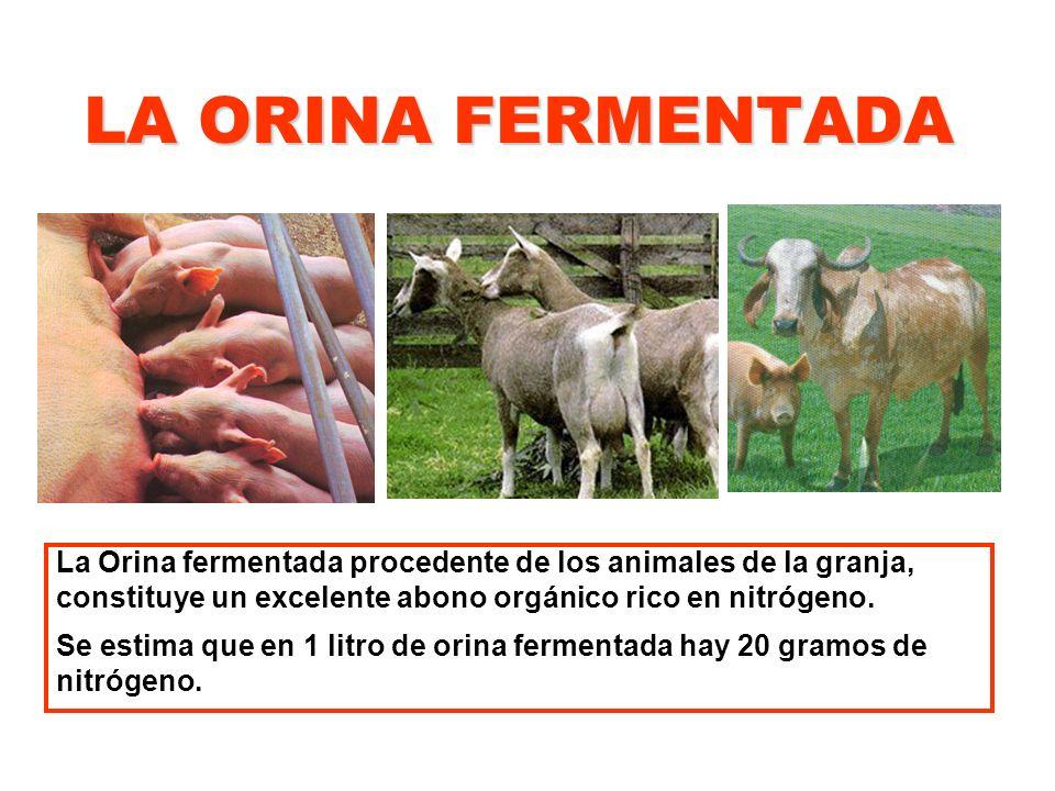 LA ORINA FERMENTADA La Orina fermentada procedente de los animales de la granja, constituye un excelente abono orgánico rico en nitrógeno.