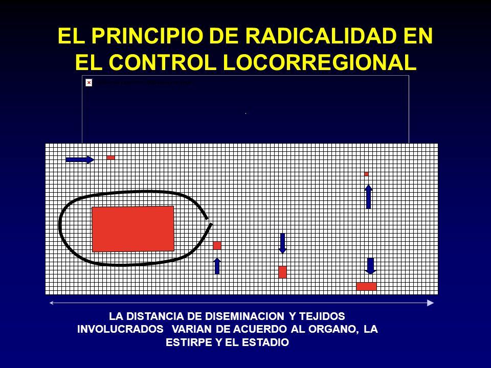 EL PRINCIPIO DE RADICALIDAD EN EL CONTROL LOCORREGIONAL