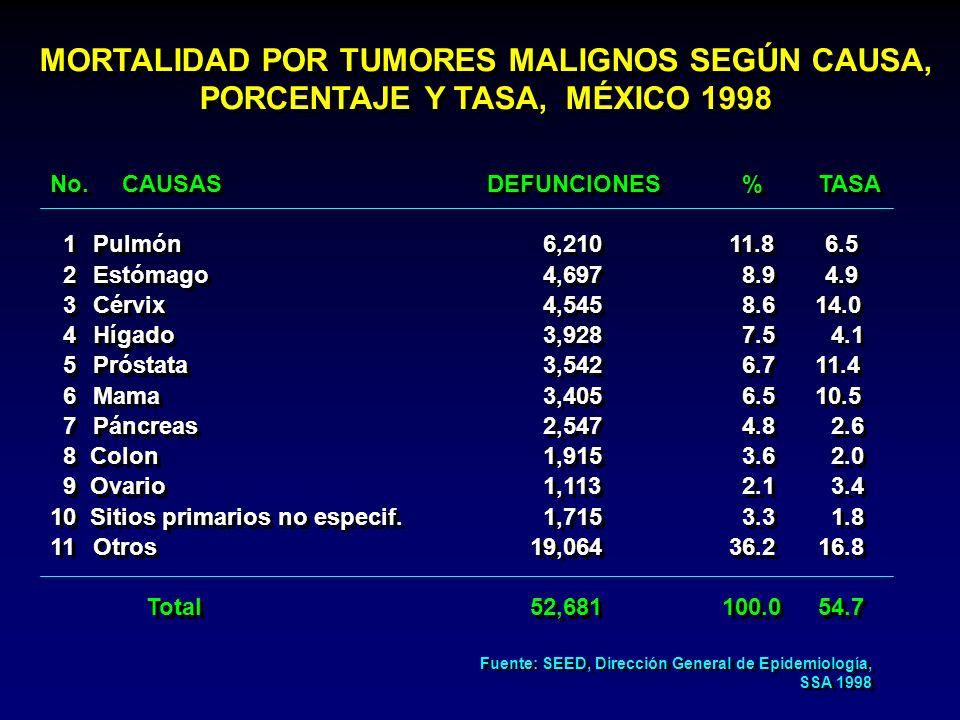 MORTALIDAD POR TUMORES MALIGNOS SEGÚN CAUSA, PORCENTAJE Y TASA, MÉXICO 1998