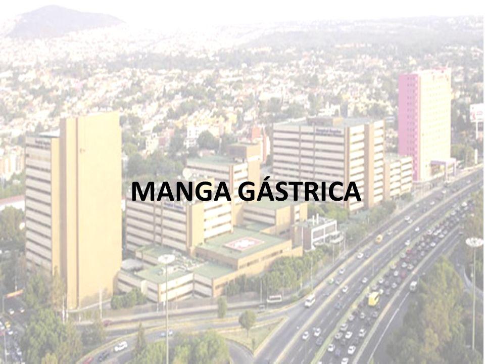 MANGA GÁSTRICA