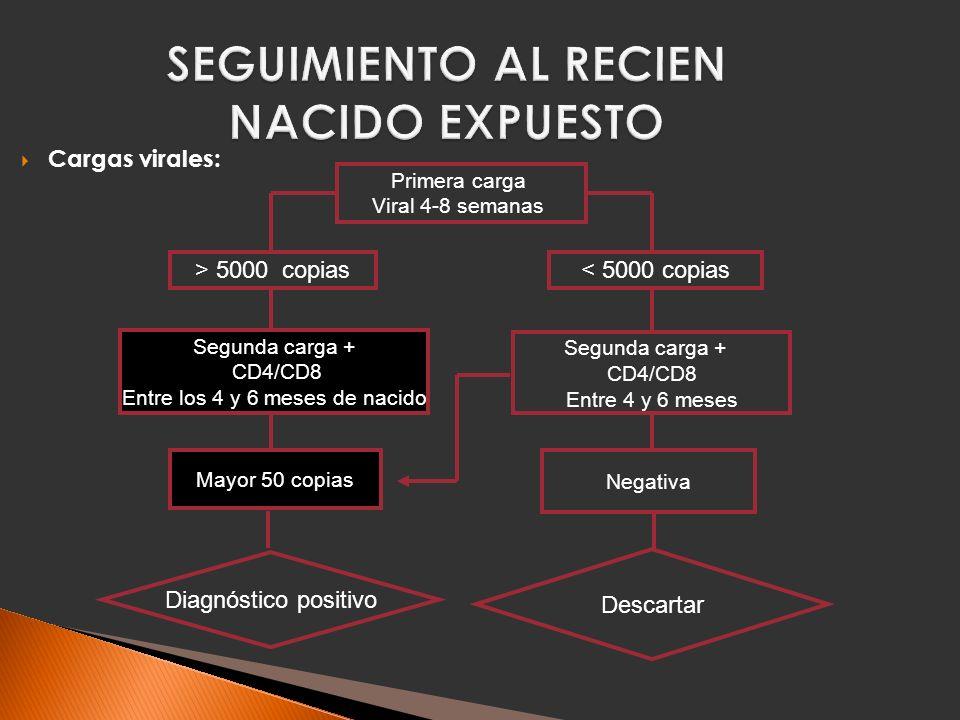 SEGUIMIENTO AL RECIEN NACIDO EXPUESTO