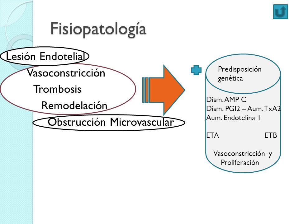 FisiopatologíaLesión Endotelial Vasoconstricción Trombosis Remodelación Obstrucción Microvascular Predisposición.