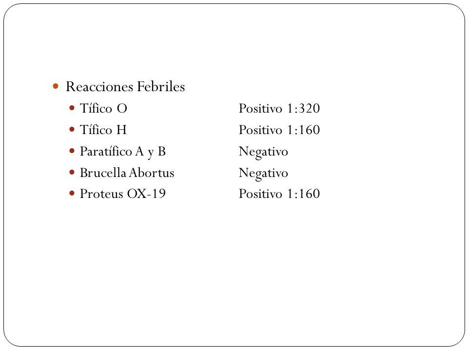 Reacciones Febriles Tífico O Positivo 1:320 Tífico H Positivo 1:160