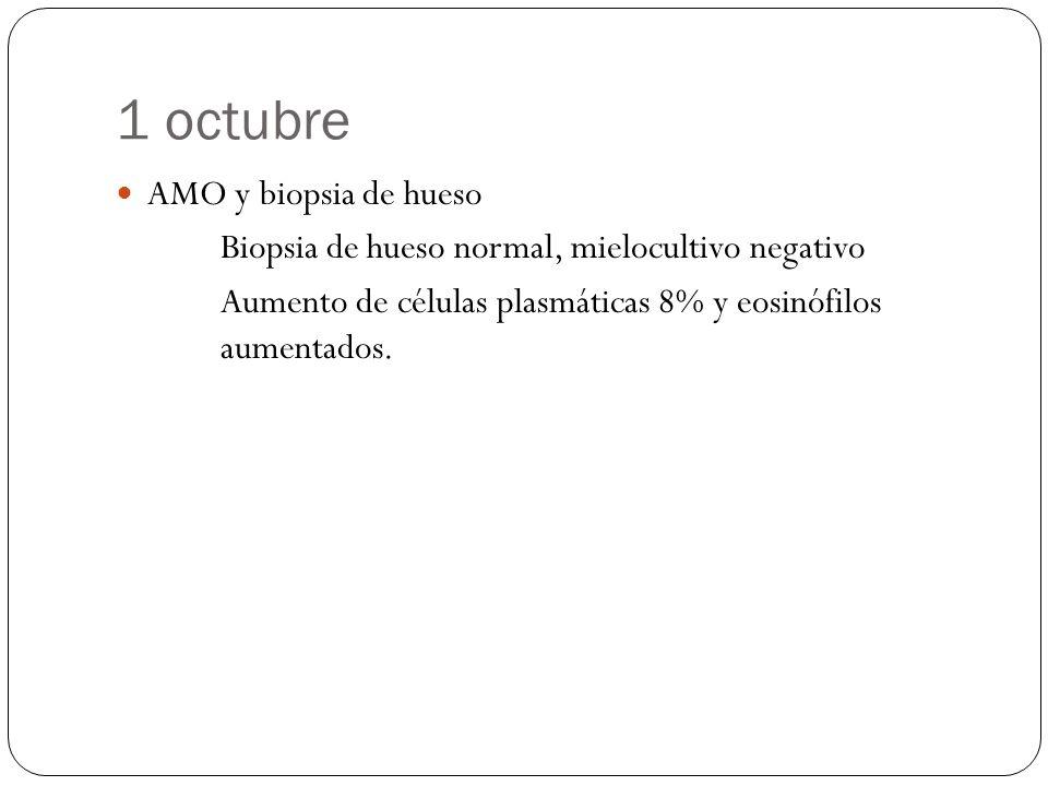 1 octubre AMO y biopsia de hueso
