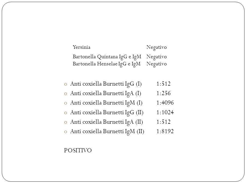 Anti coxiella Burnetti IgG (I) 1:512