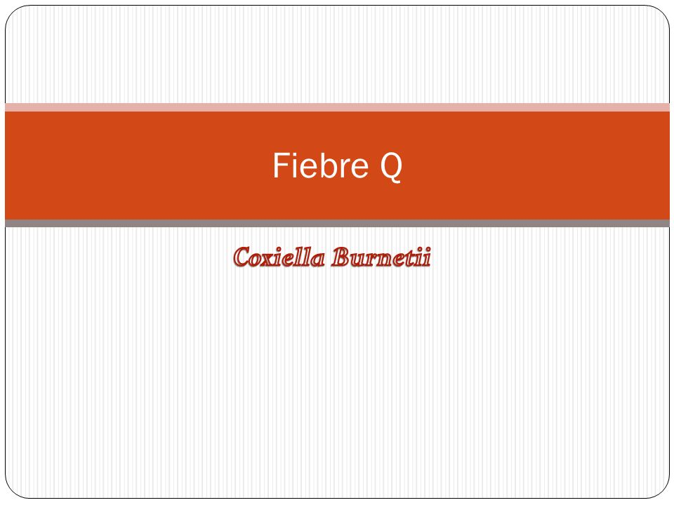 Fiebre Q Coxiella Burnetii
