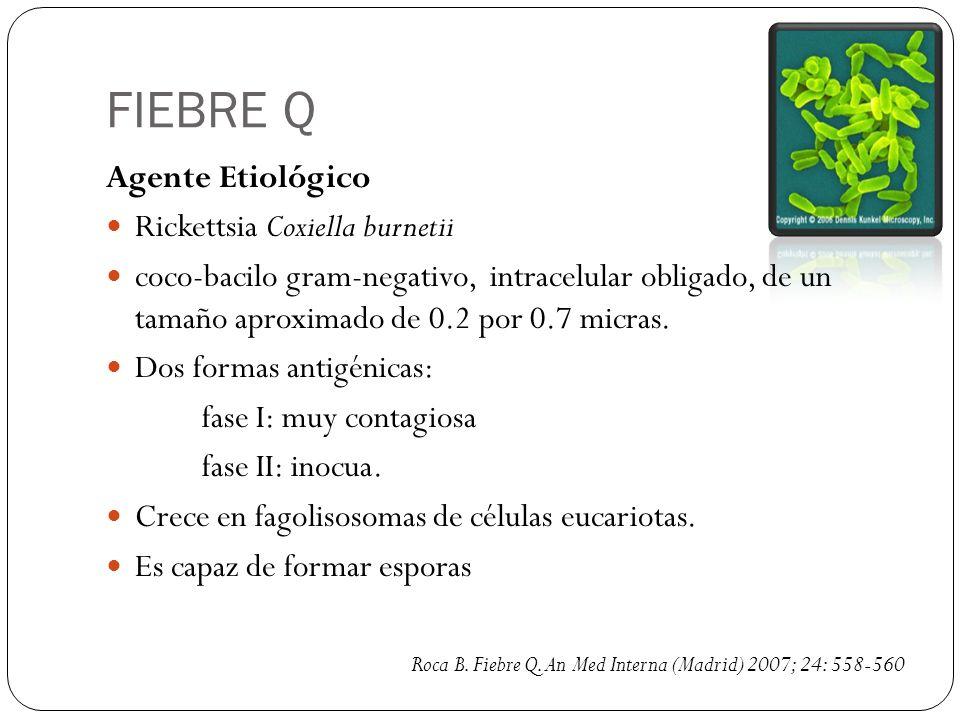 FIEBRE Q Agente Etiológico Rickettsia Coxiella burnetii